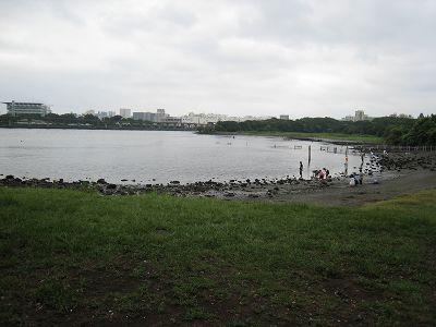 2011073106