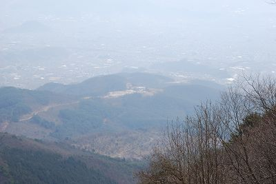 2009040409