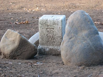 2011011606